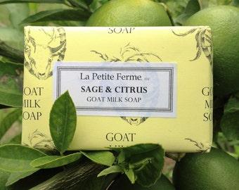 Sage and Citrus goat milk soap - light and refreshing, wedding favor, gift for her, gift for him, gift under 10, wedding shower, spring
