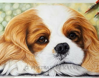Custom Pet lovers gift,CAVALIER KING Charles Spaniel, Custom pet drawing, animal portrait, pet portrait , dog portraits, personalized pet