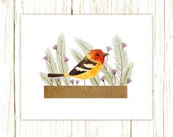 Western Tanager Print -- bird art -- colorful bird art 52 birds stephanie fizer coleman illustration