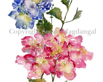 Hydrangea Watercolor, Fine Art Print, Watercolor Flowers, Hydrangeas, 8x10, 11x14