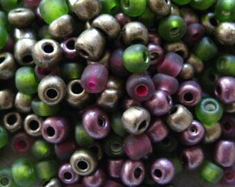 Grammes de semences perle Mix 15 Sonoma Wine 6/0