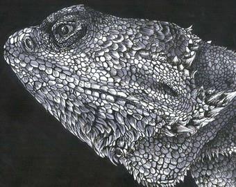 Weezie the Bearded Dragon Art Print