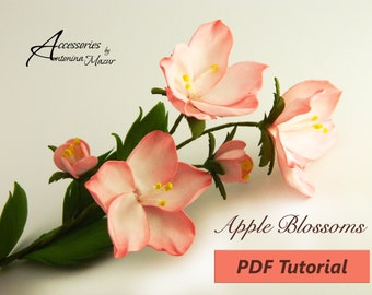 A sprig of Apple blossoms of foam eva PDF Tutorial