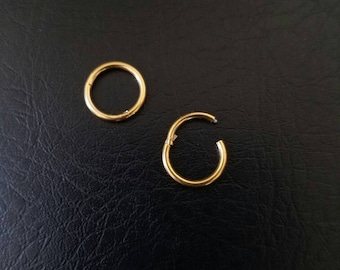 """14g 1/4"""" (6mm) Small Gold Titanium anodized 316L Steel Seamless Segment Hinged Ring Hoop body jewelry eyebrow septum nose smiley helix lip"""