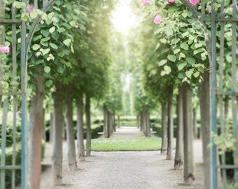 Versailles Paris Photography - Pink Garden Roses, Paris, France Travel Photography, French Country Home Decor, Large Wall Art