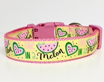 Summer - One in a Melon - Dog Collar -Watermellon - Spring - Summer - Fun - Handmade - Dog Gift - Pet