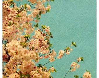 Flower Photograph - Spring Bloom - Cherry Blossom - Neon - Original  Fine Art Photograph- Home Decor - Flower Photography - Pink - Turquoise