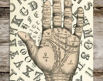 Vintage Style Antique Palmistry Reproduction Print from Curious London