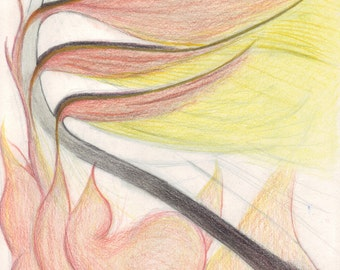 Phoenix Rising From the Flames