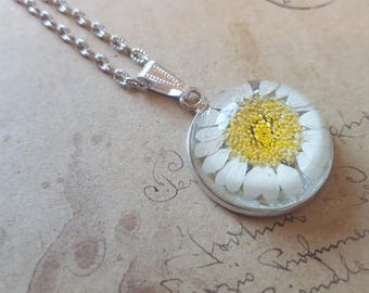 Real Daisy cabochon necklace ~ silver ~