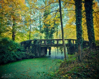 Fairytale Photography, Forest, Nature Print, Emerald Green, Yellow, Crossing, Bridge, Foliage, Trees, Fine Art, Fall Decor, Large Wall Art