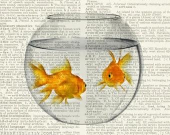 goldfish bowl dictionary print