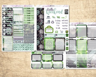 Succulent B6 Photo Kit - Store in B6 - works will with SMC, 1407, LPA inserts