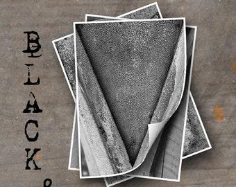 LETTER V Alphabet Photography LETTERS - Black and White Alphabet Photos
