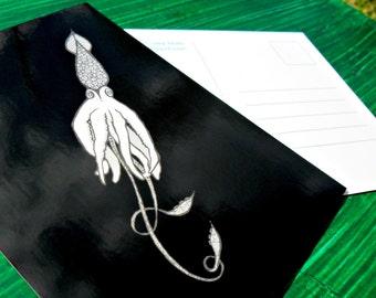 Postcard Black Squid Animal Art