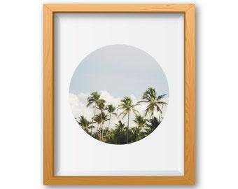 Palm Tree Print, Palm Tree Art, Palm Tree Decor, Palm Tree Wall Art, Palm Tree Wall Decor, Palm Tree Art Decor, Wall Art Photography