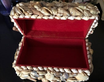 Shell Jewelry/Trinket Box or Treasure Chest