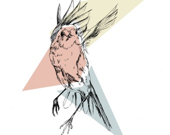throat red illustration, bird, geometric shapes