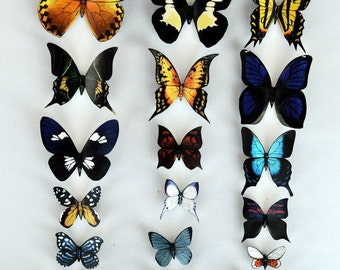 Butterfly Magnets Kitchen Decor Set of 18 Insects Refrigerator Magnets Multi Color Home Decor Kitchen Magnets Butterflies