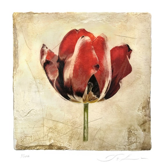 The Red Tulip, botanical print, mother's day, flower print, affordable art, venetian plaster, italian fresco,wall decor, limited edition,