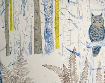 Owl in Birch Woodland - drypoint print