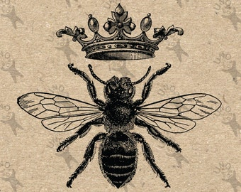 Vintage black and white image Queen Bee Queen  Instant Download Digital printable picture clipart graphic - transfer, burlap, iron on 300dpi