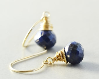 Blue Dangle Earrings, Lapis Drop Earrings, December Birthstone