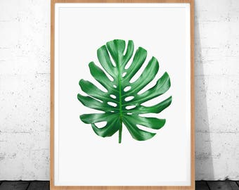 Monstera Print, Tropical Leaf, Green Leaf Print, Botanical Print, Tropical Leaves, Gorgeous Monstera, Leaf Wall Print Art, Botanical Art