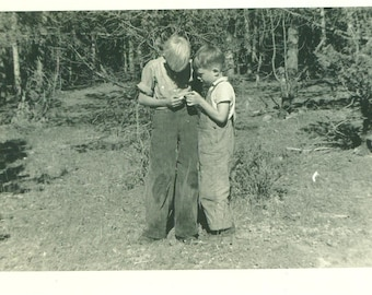 1938 Colorado Boys Examining a Great Find Outside 30s Vintage Photograph Black White Photo