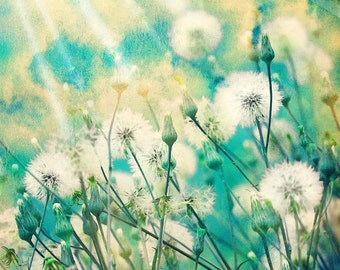 Dandelion art,dandelion poster,wishes,make a wish,whimsical,nursery art,turquoise,sunshine,sun rays,flowers,garden,surreal,home decor,