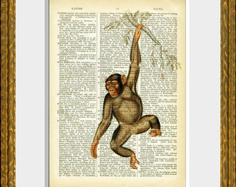 SWINGING MONKEY - dictionary art print - upcycled antique dictionary page with an antique jungle animal illustration - wall art