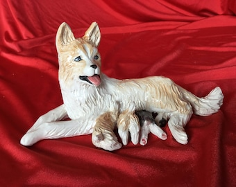 Siberian husky nursing puppies