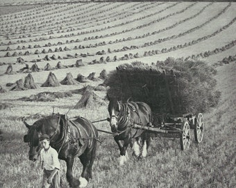 Berkshire Harvest 1930s vintage Print B & W photograph Vintage ephemera repurposed Horse Cart Old UK
