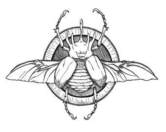Hercules Beetle - Art Print 8x10 / 5x7
