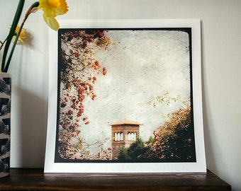 The Tower in Roses - reindeer - 30x30cm - signed and numbered print