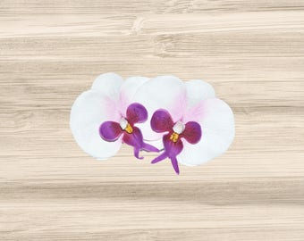 Double White and Purple Phalaenopsis Orchid Hair Clip