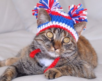 4th of July pet hat - POM POM dog cat CHEERLEADER Hat - 2 to 20 lb dog or cat