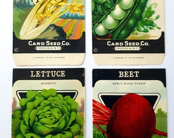 4 Different Original Card Seed Packets - Celery Peas Lettuce Beet Fedonia New York