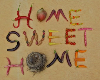 HOME SWEET HOME greeting card Blank inside