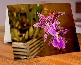 Pack of 5 Assortment Orchid Cards