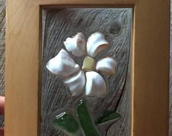 Sea Shell Daisy w/ Seaglass & Sea Pottery