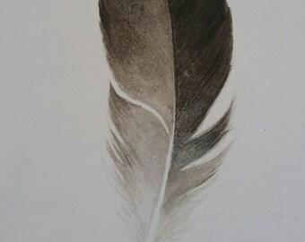 Original Feather Watercolor, modern, home decor, boho decor, sea gull, modern decor, nature art, feather art, beach decor, feather art