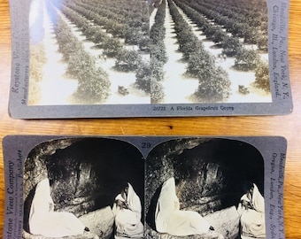 Stereoscopic Cards 2pc
