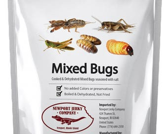 Edible Insects Bagof Mixed Edible Bugs. Grasshoppers, Crickets, Silk Worms and Sago Worms