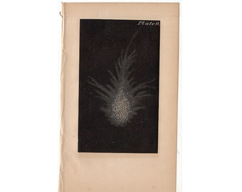 c. 1848 CRAB NUBULA print original antique rare astronomy celestial lithograph - Lord Rosse's Crab Nubula
