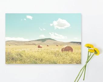 "landscape wall art, landscape photography, photograph with mat, landscape wall art, landscape art prints, art prints - ""A Day in the Fields"""