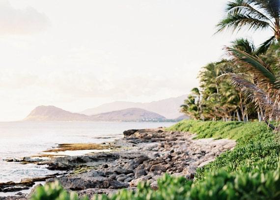 Everyday in Hawaii Nei