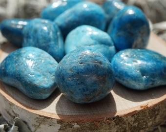Blue Apatite Tumbled Stones