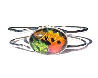 Real Butterfly Wing Bracelet, Madagascar Sunset Moth, Statement Jewelry, Rainbow Glass, Gemstone Cuff, Friendship, Entomology