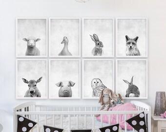 Acht Baby Animal-Prints Wald Kindergarten Kunst Mädchen Kinderzimmer Zimmer Dekor Tierportraits Tierfotografie Kinderzimmer druckt Leinwände